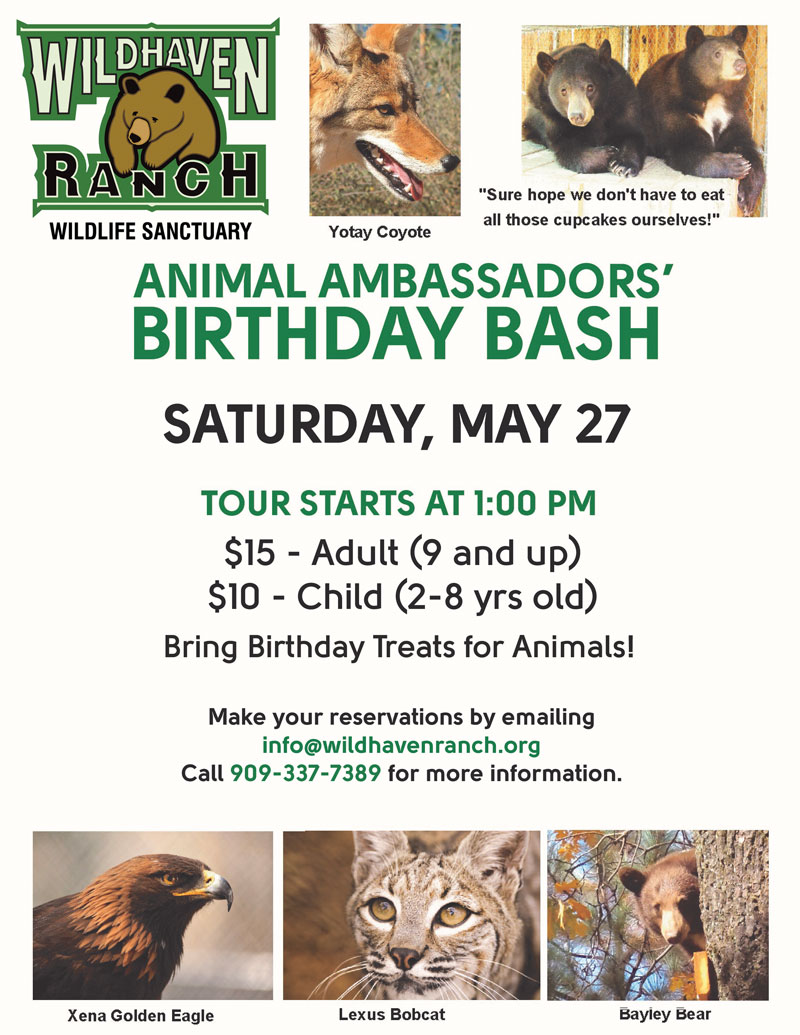 Animal-Ambassador-Birthday-BASH3