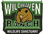 Wildhaven Ranch Wildlife Sanctuary